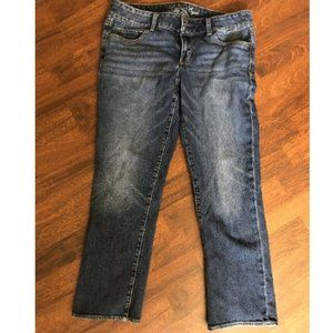 American Eagle Artist Stretch Denim Jeans